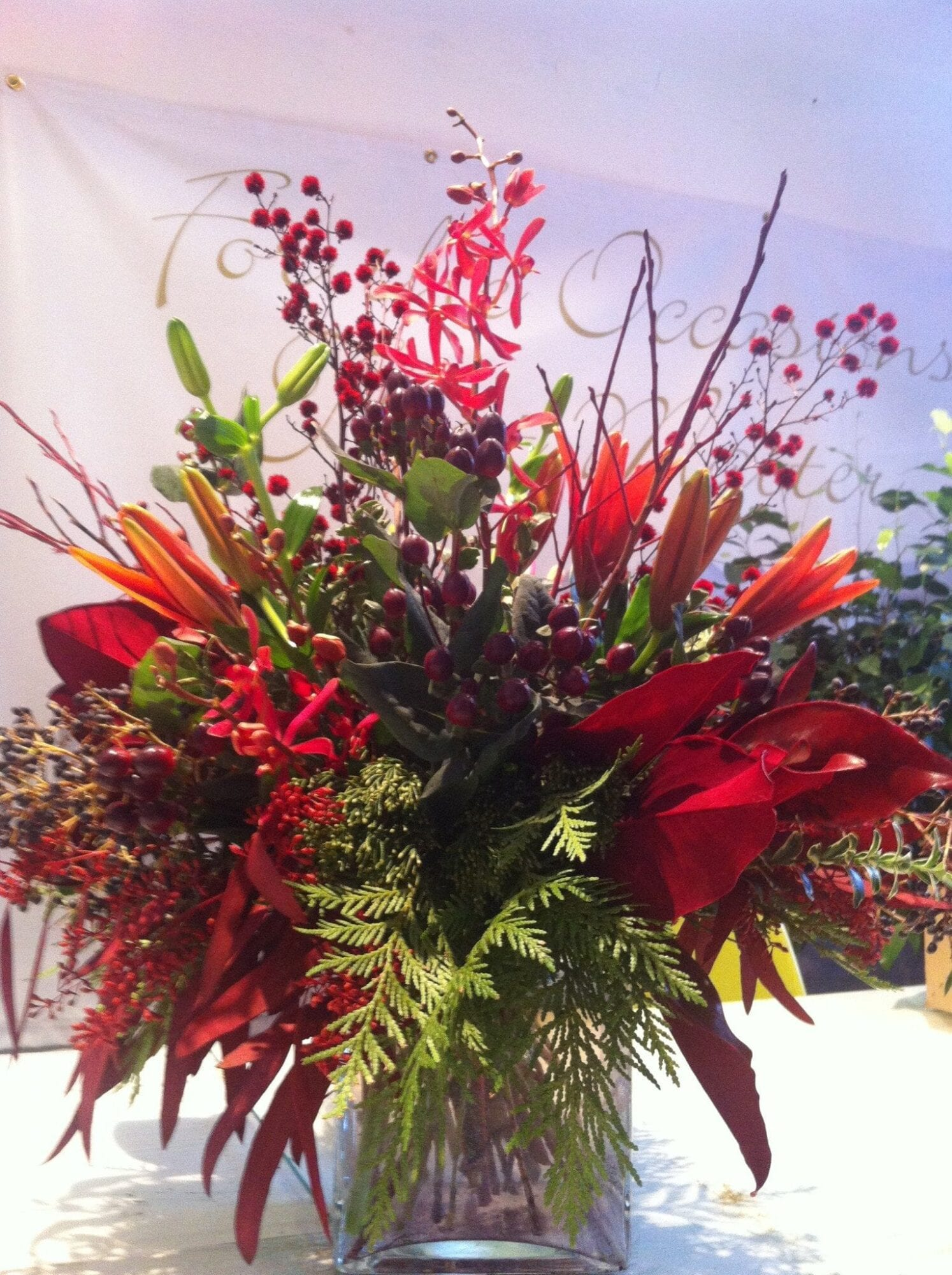 Christmas reds burgundy orchids marlow floralworks Christmas orchid arrangements