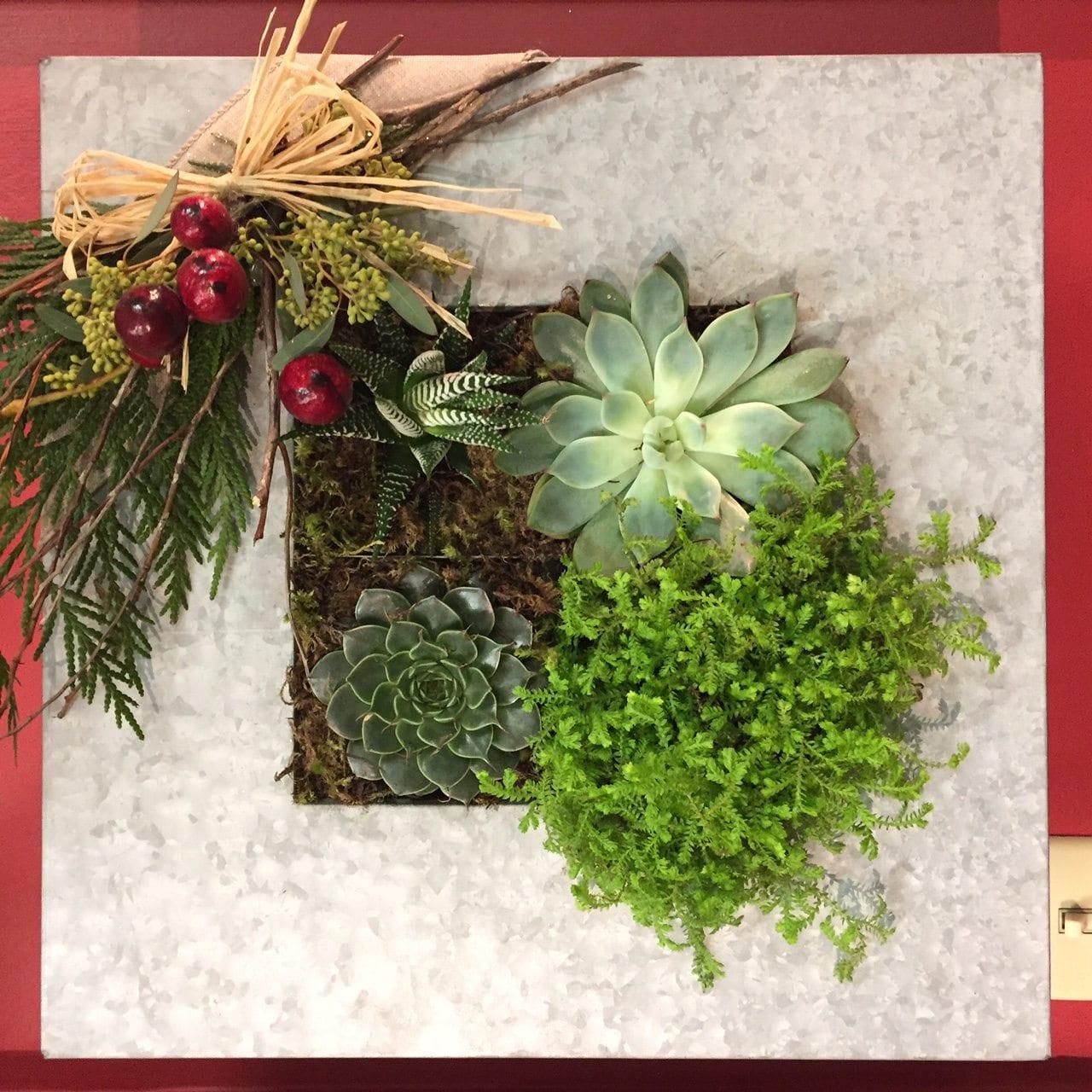 Christmas Succulent Planters.Succulent Christmas Wall Planter